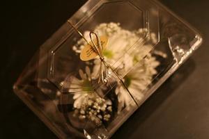 Flower_blog